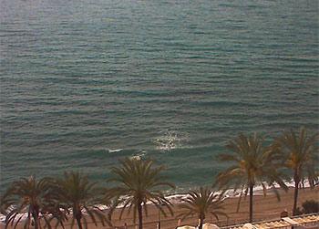 Cámara Playa Marbella (Marbella)
