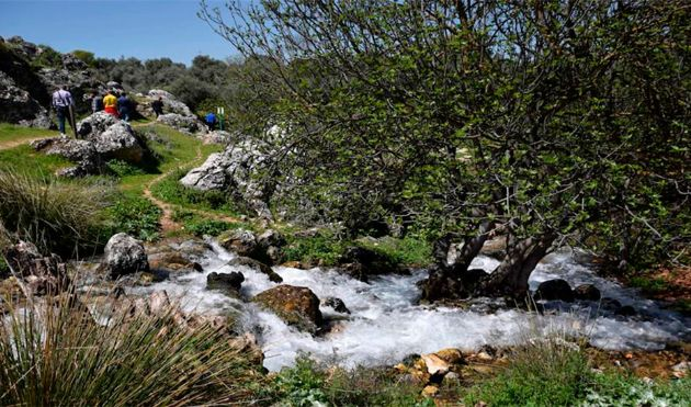 Nacimiento de Riofrío (Granada)