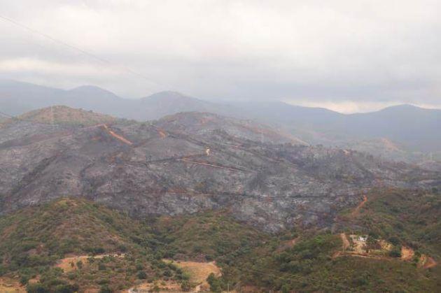 Incendio forestal en Estepona