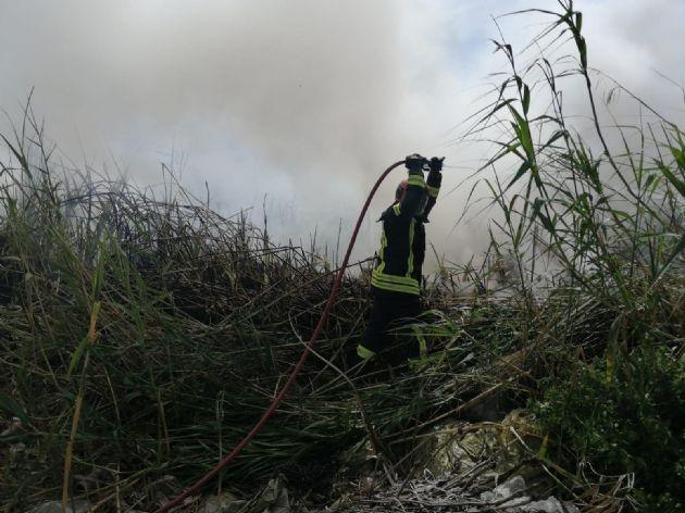 Incendio forestal en la zona de Las Albuferas de Adra (Almería)