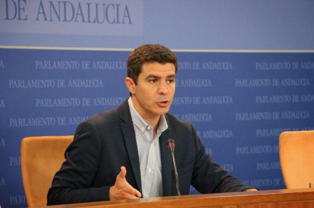 El portavoz parlamentario de Ciudadanos, Sergio Romero
