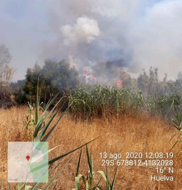Incendio declarado en un paraje de Gibraleón