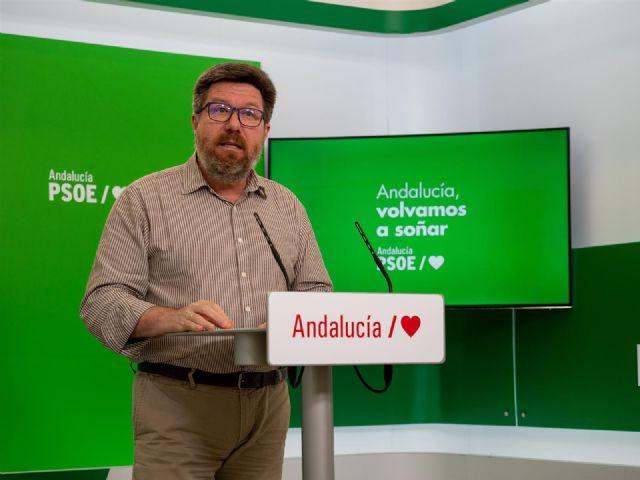 El portavoz adjunto del Grupo Socialista en el Parlamento de Andalucía, Rodrigo Sánchez Haro, en rueda de prensa