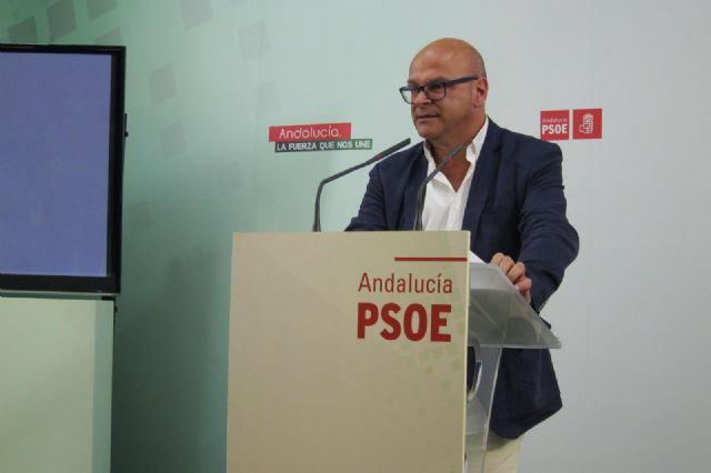 El senador socialista por Jaén Manuel Fernández