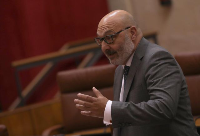El portavoz del grupo parlamentario Vox, Alejandro Hernández - María José López - Europa Press