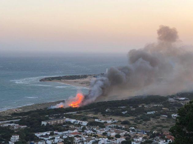 Incendio en el pinar en Los Caños