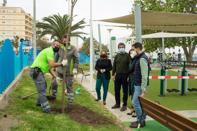 Plantación de árboles en Adra (Almería)