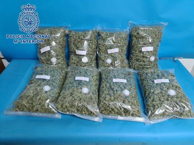 Cogollos de marihuana intervenidos