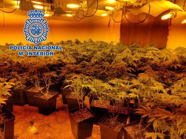 Marihuana intervenida en Jaén por la Policía Nacional