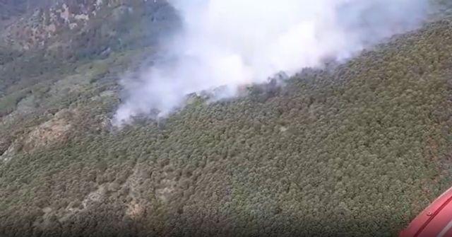 Incendio forestal en Genalguacil